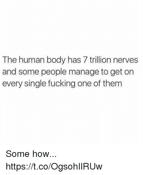 Fucking, Funny, and Single: The human body has 7 trillion nerves  and some people manage to get on  every single fucking one of them Some how... https://t.co/OgsohIlRUw