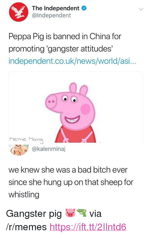 """Bad, Bad Bitch, and Bitch: The Independent  @lndependent  Peppa Pig is banned in China for  promoting 'gangster attitudes'  independent.co.uk/news/world/asi...  Meme Man  @kalenminaj  we knew she was a bad bitch ever  since she hung up on that sheep for  whistling <p>Gangster pig 🐷🔫 via /r/memes <a href=""""https://ift.tt/2Ilntd6"""">https://ift.tt/2Ilntd6</a></p>"""