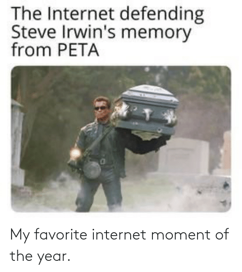 steve: The Internet defending  Steve Irwin's memory  from PETA My favorite internet moment of the year.
