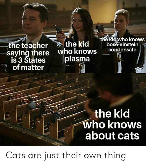 Cats, Reddit, and Teacher: the kid who knows  bose-einstein  condensate  the kid  the teacher  who knows  plasma  saying there  is 3 Štates  of matter  the kid  who knows  about cats Cats are just their own thing