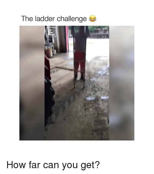 How, Can, and Challenge: The ladder challenge  ls How far can you get?
