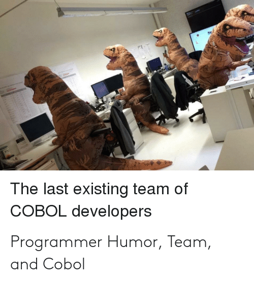 Programmer Humor, Team, and Cobol: The last existing team of  COBOL developers Programmer Humor, Team, and Cobol