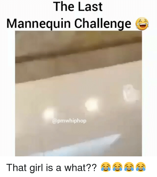 Mannequin Challenge: The Last  Mannequin Challenge  apmwhiphop That girl is a what?? 😂😂😂😂