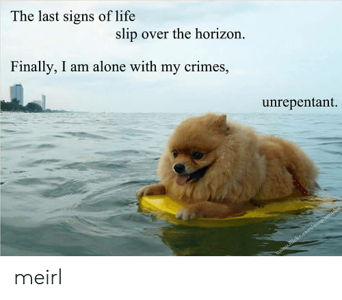 Being Alone, Life, and MeIRL: The last signs of life  slip over the horizon.  Finally, I am alone with my crimes,  unrepentant. meirl