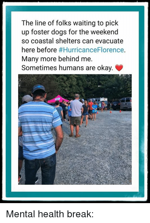 Dogs, Break, and Okay: The line of folks waiting to pick  up foster dogs for the weekend  so coastal shelters can evacuate  here before #HurricanceFlorence.  Many more behind me.  Sometimes humans are okay. Mental health break: