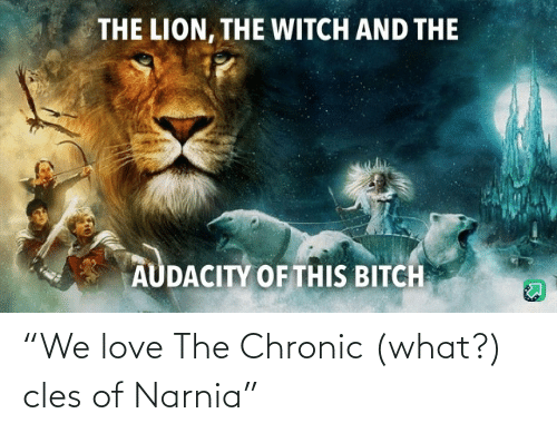 "witch: THE LION, THE WITCH AND THE  AUDACITY OF THIS BITCH ""We love The Chronic (what?) cles of Narnia"""
