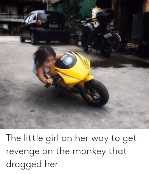 Revenge: The little girl on her way to get revenge on the monkey that dragged her