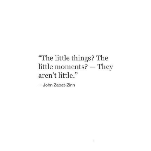 """They,  Things, and  Little Things: """"The little things? The  little moments? - They  aren't little.""""  35  John Zabat-Zinn"""