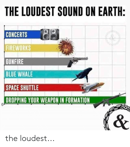 Memes, Formation, and Blue: THE LOUDEST SOUND ON EARTH:  CONCERTS  FIREWORKS  GUNFIRE  BLUE WHALE  SPACE SHUTTLE  DROPPING YOUR WEAPON IN FORMATION the loudest...