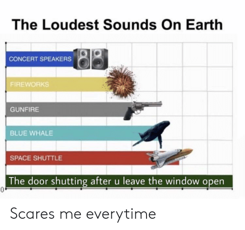 Loudest: The Loudest Sounds On Earth  CONCERT SPEAKERS  FIREWORKS  GUNFIRE  BLUE WHALE  SPACE SHUTTLE  The door shutting after u leave the window open  0. Scares me everytime