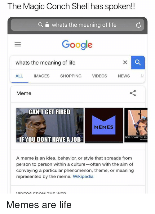 Google, Life, and Meme: The Magic Conch Shell has spoken!!  a  whats the meaning of life  Google  whats the meaning of life  ALL IMAGES SHOPPING  VIDEOS NEWS  Meme  CAN'T GET FIRED  MEMES  WELCOME TO TH  IF YOU DONT HAVE A JOB  A meme is an idea, behavior, or style that spreads from  person to person within a culture often with the aim of  conveying a particular phenomenon, theme, or meaning  represented by the meme. Wikipedia Memes are life