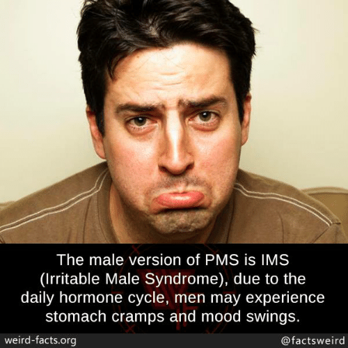 Facts, Memes, and Mood: The male version of PMS is IMS  (Irritable Male Syndrome), due to the  daily hormone cycle, men may experience  stomach cramps and mood swings.  weird-facts.org  @factsweird