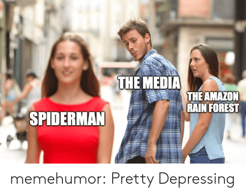 Spiderman: THE MEDIA  THE AMAZON  RAIN FOREST  SPIDERMAN memehumor:  Pretty Depressing
