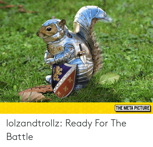 Tumblr, Blog, and Com: THE META PICTURE lolzandtrollz:  Ready For The Battle