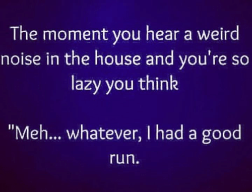 "Lazy, Meh, and Memes: The moment you hear a weird  noise in the house and you're so  lazy you think  ""Meh... whatever, I had a good  run"