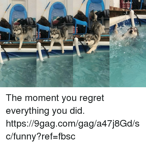 9gag, Dank, and Funny: The moment you regret everything you did.  https://9gag.com/gag/a47j8Gd/sc/funny?ref=fbsc