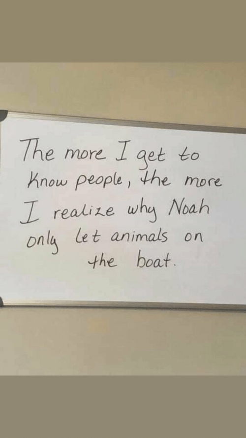 Animals, Noah, and Boat: The more Iaet to  Know people, the more  I realize why Noah  onla let animals on  the boat