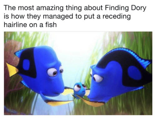 Hairline: The most amazing thing about Finding Dory  is how they managed to put a receding  hairline on a fish
