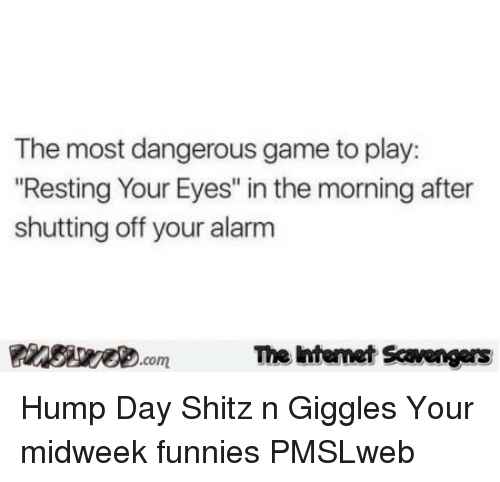 """Hump Day: The most dangerous game to play:  Resting Your Eyes"""" in the morning after  shutting off your alarm  PinsiwecomThe htemet Scavengers <p>Hump Day Shitz n Giggles  Your midweek funnies  PMSLweb </p>"""