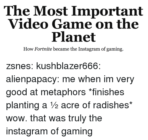 metaphors: The Most Important  Video Game on the  Planet  How Fortnite became the Instagram of gaming. zsnes:  kushblazer666:  alienpapacy: me when im very good at metaphors *finishes planting a ½ acre of radishes* wow. that was truly the instagram of gaming