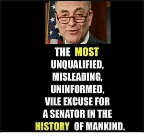 Memes, History, and 🤖: THE MOST  UNQUALIFIED,  MISLEADING,  UNINFORMED  VILE EXCUSE FOR  A SENATOR IN THE  HISTORY OF MANKIND.