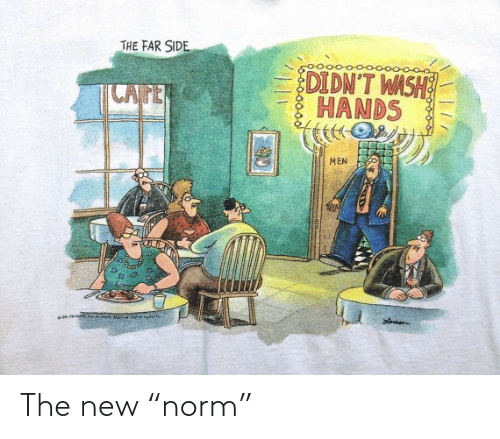 """The New: The new """"norm"""""""