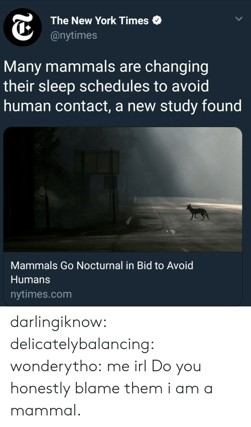 New York, Target, and Tumblr: The New York Times  @nytimes  Many mammals are changing  their sleep schedules to avoid  human contact, a new study found  Mammals Go Nocturnal in Bid to Avoid  Humans  nytimes.com darlingiknow:  delicatelybalancing:  wonderytho: me irl Do you honestly blame them   i am a mammal.