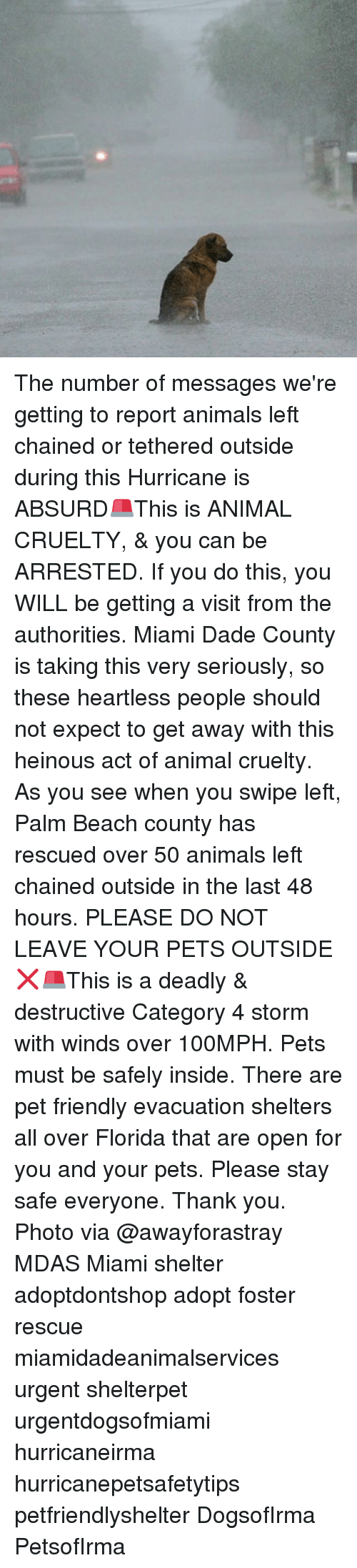 Animals, Memes, and Thank You: The number of messages we're getting to report animals left chained or tethered outside during this Hurricane is ABSURD🚨This is ANIMAL CRUELTY, & you can be ARRESTED. If you do this, you WILL be getting a visit from the authorities. Miami Dade County is taking this very seriously, so these heartless people should not expect to get away with this heinous act of animal cruelty. As you see when you swipe left, Palm Beach county has rescued over 50 animals left chained outside in the last 48 hours. PLEASE DO NOT LEAVE YOUR PETS OUTSIDE❌🚨This is a deadly & destructive Category 4 storm with winds over 100MPH. Pets must be safely inside. There are pet friendly evacuation shelters all over Florida that are open for you and your pets. Please stay safe everyone. Thank you. Photo via @awayforastray MDAS Miami shelter adoptdontshop adopt foster rescue miamidadeanimalservices urgent shelterpet urgentdogsofmiami hurricaneirma hurricanepetsafetytips petfriendlyshelter DogsofIrma PetsofIrma
