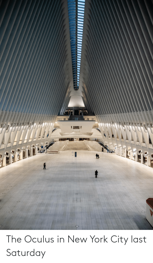 in-new-york-city: The Oculus in New York City last Saturday