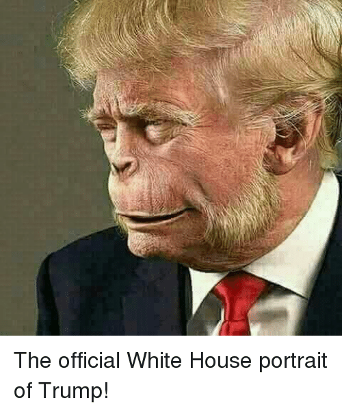 White House, House, and Trump: The official White House portrait of Trump!