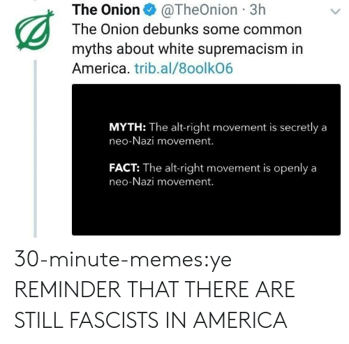 America, Memes, and The Onion: The Onion@TheOnion 3h  The Onion debunks some common  myths about white supremacism in  America. trib.al/8oolkO6  MYTH: The alt-right movement is secretly a  neo-Nazi movement.  FACT: The alt-right movement is openlya  neo-Nazi movement. 30-minute-memes:ye REMINDER THAT THERE ARE STILL FASCISTS IN AMERICA