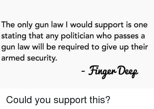 Memes, 🤖, and Gun: The only gun law I would support is one  stating that any politician who passes a  gun law will be required to give up their  armed security.  Fingen Doep Could you support this?