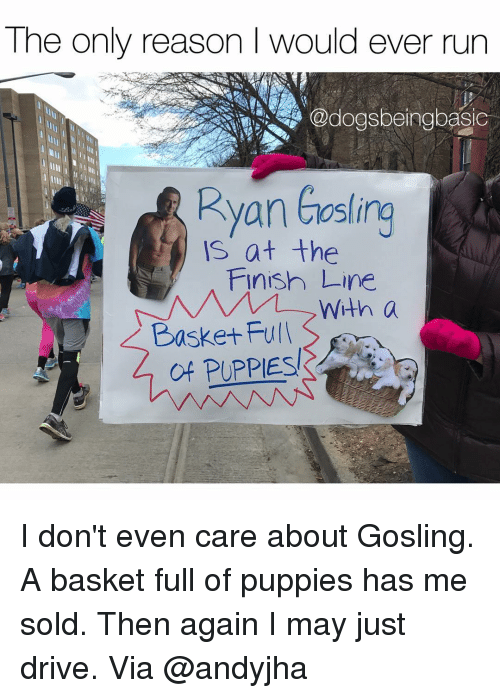 Finish Line, Memes, and 🤖: The only reason I would ever run  Ryan easing  is at the  Finish Line  With a  Basket Full  of PUPPIES I don't even care about Gosling. A basket full of puppies has me sold. Then again I may just drive. Via @andyjha