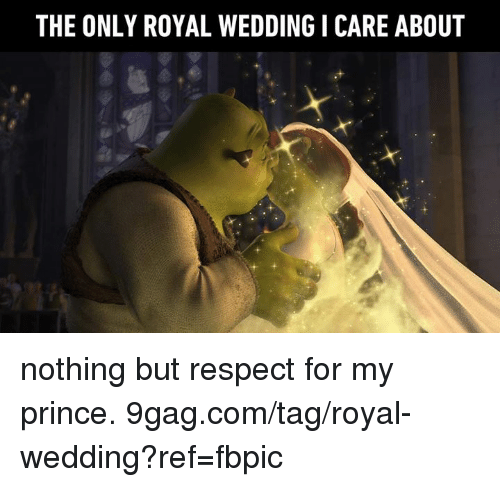 9gag, Dank, and Prince: THE ONLY ROYAL WEDDING I CARE ABOUT nothing but respect for my prince. 9gag.com/tag/royal-wedding?ref=fbpic