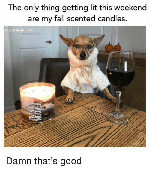 Fall, Funny, and Lit: The only thing getting lit this weekend  are my fall scented candles.  gmarykatefelisofficial Damn that's good
