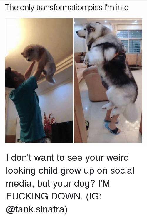 Fucking, Memes, and Social Media: The only transformation pics l'm into I don't want to see your weird looking child grow up on social media, but your dog? I'M FUCKING DOWN. (IG: @tank.sinatra)