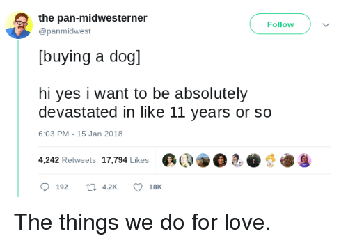 Love, Pan, and Yes: the pan-midwesterner  @panmidwest  Follow  [buying a dogl  hi yes i want to be absolutely  devastated in like 11 years or so  6:03 PM-15 Jan 2018  4,242 Retweets  17,794 Likes  @Q@.急.煲七g  0192  42K  18K The things we do for love.