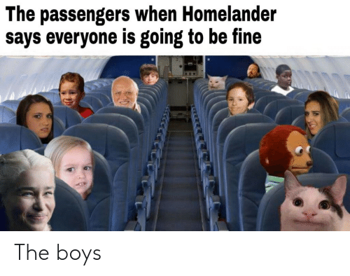 Passengers: The passengers when Homelander  says everyone is going to be fine The boys