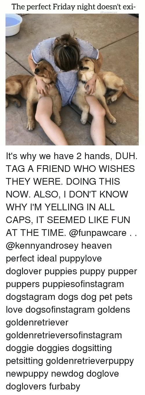 Dogs, Friday, and Heaven: The perfect Friday night doesn't exi- It's why we have 2 hands, DUH. TAG A FRIEND WHO WISHES THEY WERE. DOING THIS NOW. ALSO, I DON'T KNOW WHY I'M YELLING IN ALL CAPS, IT SEEMED LIKE FUN AT THE TIME. @funpawcare . . @kennyandrosey heaven perfect ideal puppylove doglover puppies puppy pupper puppers puppiesofinstagram dogstagram dogs dog pet pets love dogsofinstagram goldens goldenretriever goldenretrieversofinstagram doggie doggies dogsitting petsitting goldenretrieverpuppy newpuppy newdog doglove doglovers furbaby