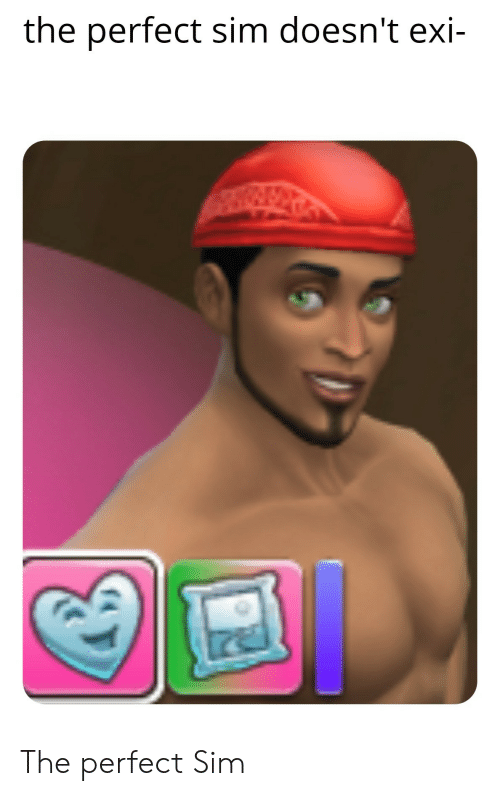 Sim, Perfect, and The: the perfect sim doesn't exi- The perfect Sim
