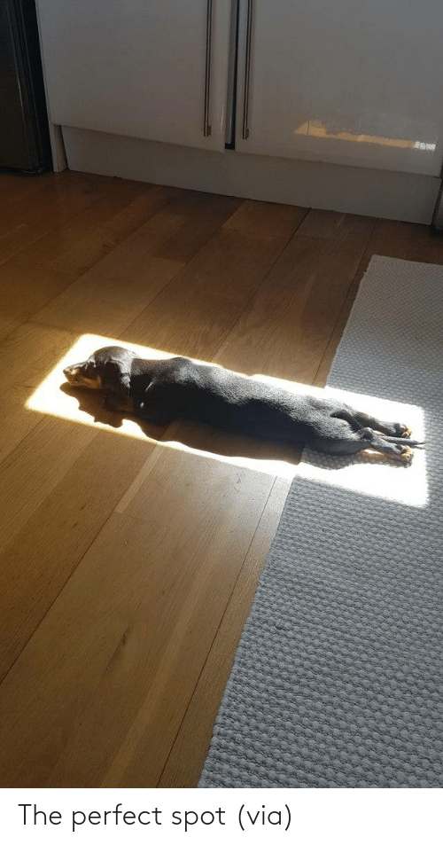 The Perfect: The perfect spot(via)