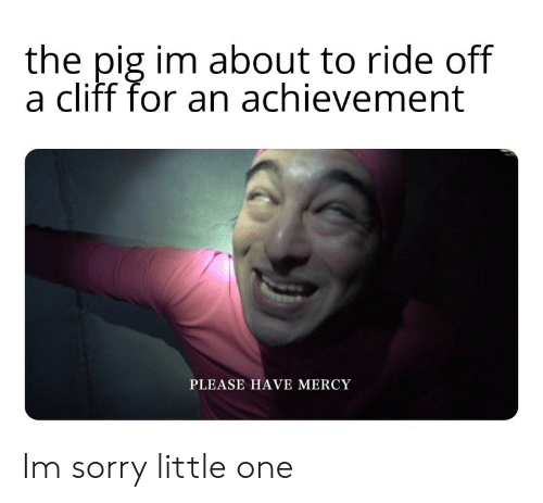 Sorry, Mercy, and Pig: the pig im about to ride off  a cliff for an achievement  PLEASE HAVE MERCY Im sorry little one