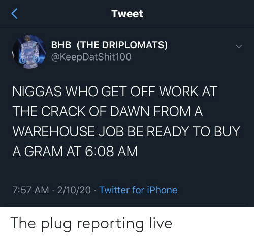 Live: The plug reporting live