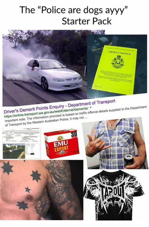 """Memes, 🤖, and Transporter: The """"Police are dogs ayyy""""  Starter Pack  DE  FECT NOTICE  Driver's Demerit Points Enquiry Department of Transport  Department  note. The information provided is based traffic offence details supplied to the on of Transport by the Western Australian Police. It may not  EXPORT"""