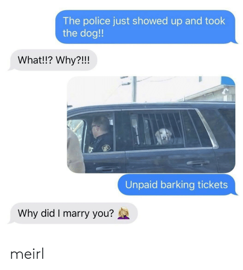 Police, MeIRL, and Dog: The police just showed up and took  the dog!  What!!? Why?!!!  Unpaid barking tickets  Why did I marry you? meirl