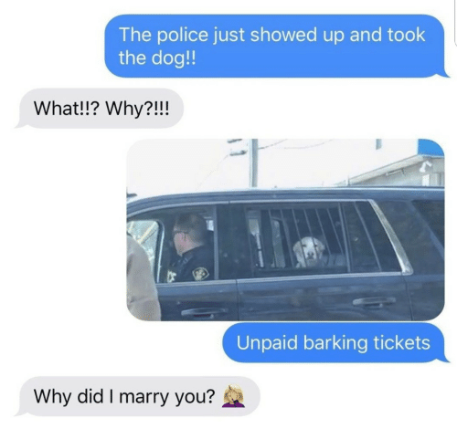 Did I: The police just showed up and took  the dog!!  What!!? Why?!!!  Unpaid barking tickets  Why did I marry you?