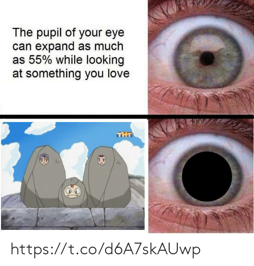 tht: The pupil of your eye  can expand as much  as 55% while looking  at something you love  THT https://t.co/d6A7skAUwp