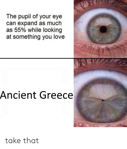 Love, Greece, and Ancient: The pupil of your eye  can expand as much  as 55% while looking  at something you love  Ancient Greece take that
