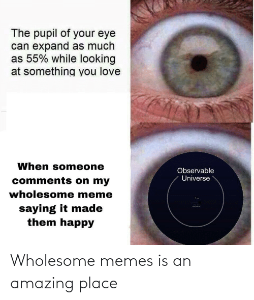 eye: The pupil of your eye  can expand as much  as 55% while looking  at something you love  When someone  Observable  Universe  comments on my  wholesome meme  saying it made  them happy Wholesome memes is an amazing place