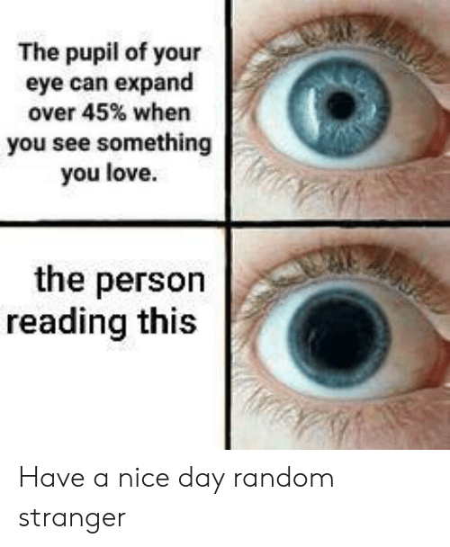 Love, Nice, and Eye: The pupil of your  eye can expand  over 45% when  you see something  you love  the person  reading this Have a nice day random stranger